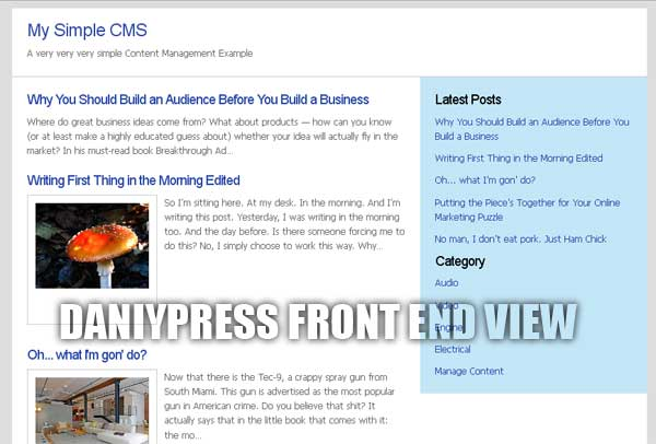 DaniyPress Frontend View